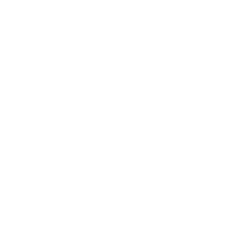 The Family Cup